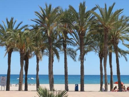 Voyage Espagne - Où on sent le pouls espagnol à Alicante… 8