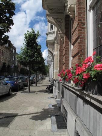 Week end Anvers : visiter Antwerpen en Flandres : que faut-il voir absolument? 10
