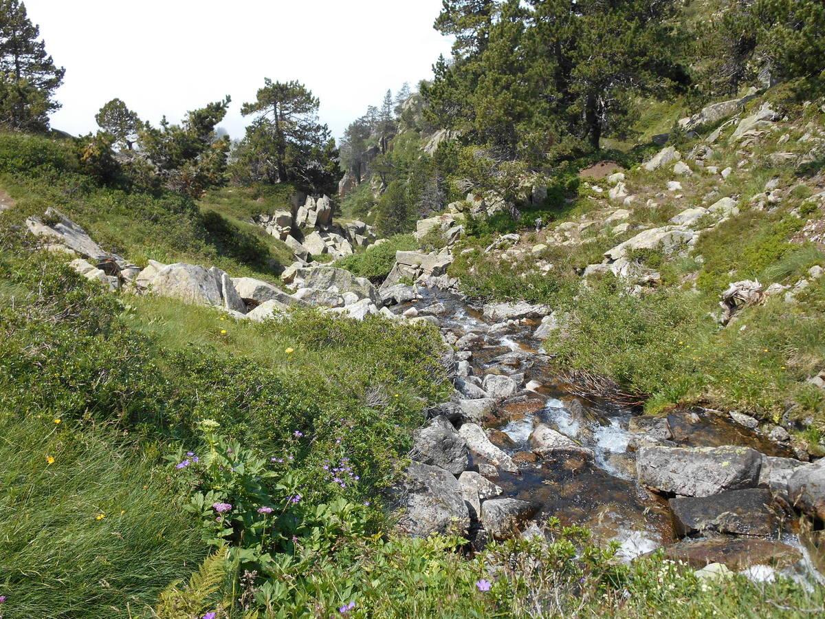 Le lac inférieur de Baciver (Val d'Aran)