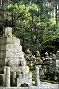 japon-necropole-koyasan.1274875507.jpg