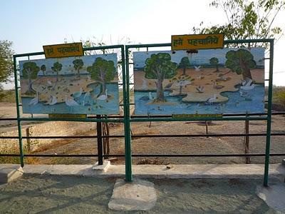 Promenade dans les villages Bishnois autour de Jodhpur : Le potier 1