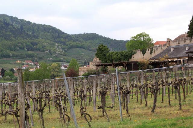 Visite de l'abbaye de Melk en photos: charmes de la vallée de la Wachau (Tourisme Autriche) 15