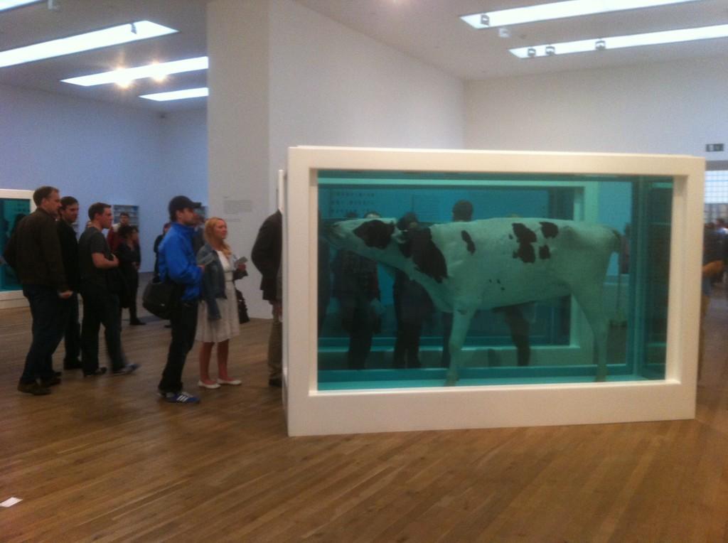 Tate Modern, Damien Hirst : artiste ou publicitaire ? 8