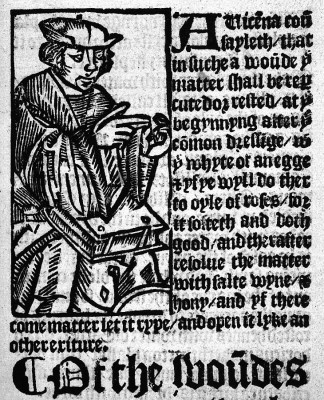 Avicenne livre Brunschwig 1525