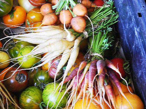 légumes et fruits oubliés passard