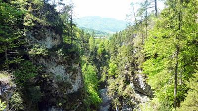 De Eschenlohe à l'Osterfeuerspitze ; balade bucolique en Bavière (Randonnée Allemagne) 35