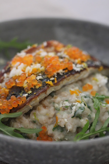 Filets de maquereaux grillés petit épeautre au chou fleur , oeufs de truite recette divine du Frenchie 3