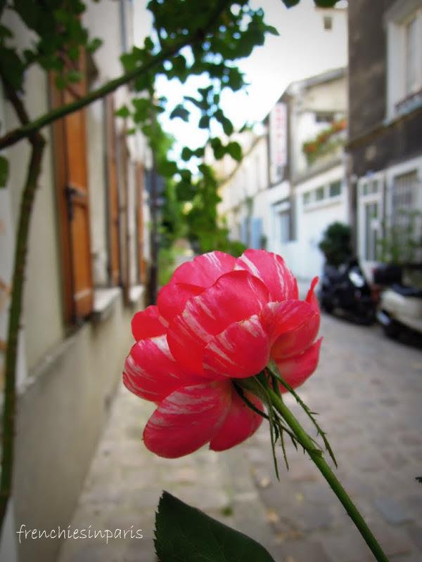 Sortir à Paris : à la découverte d'un Paris insolite, ludique et inattendu... 10