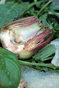 Salade d'Artichauts violets crus dit poivrades , parmesan