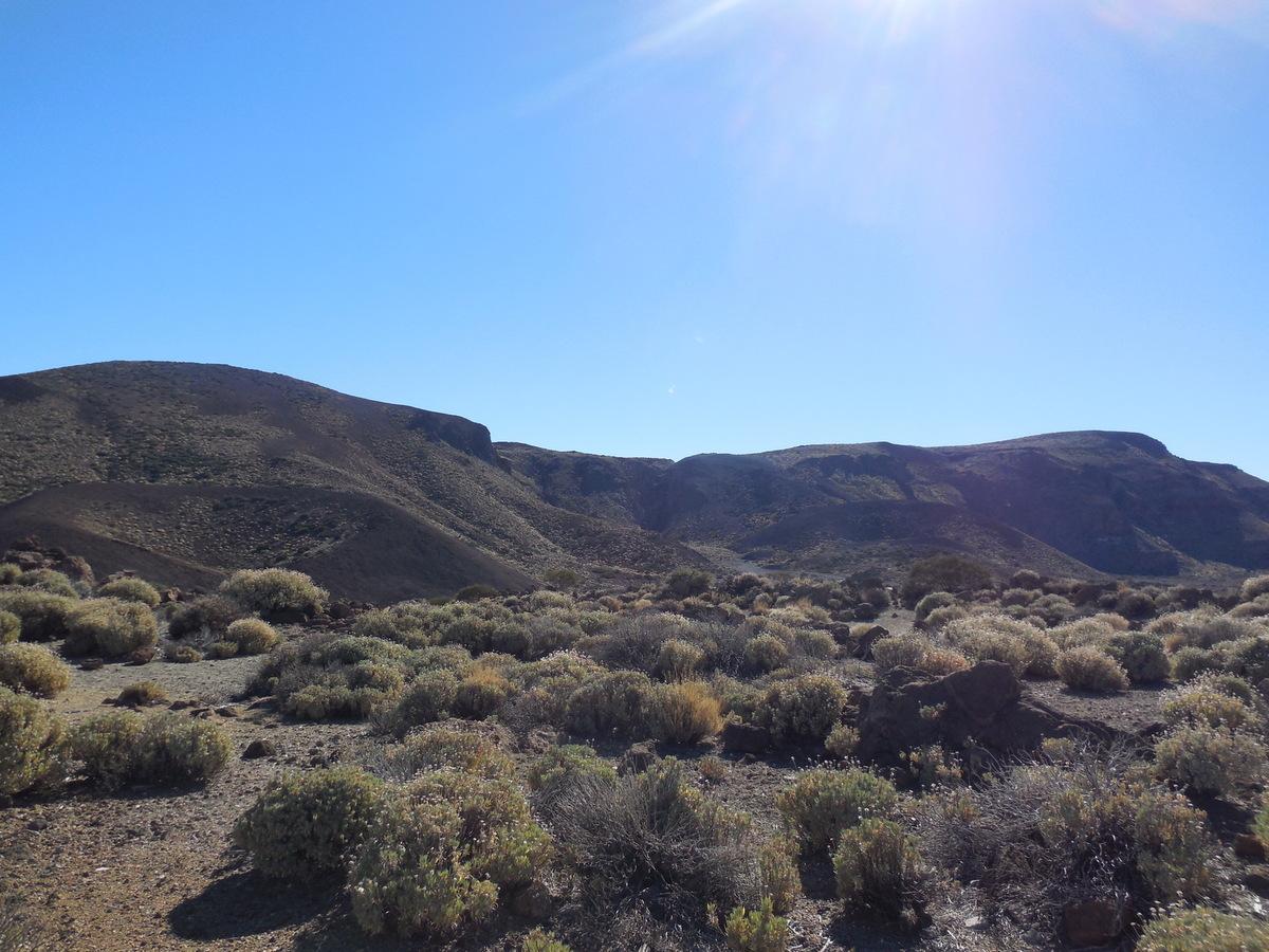 Las Cañadas qui sont en fait une gigantesque caldera de 45 Kms de circonférence (17 kms de diamètre)...