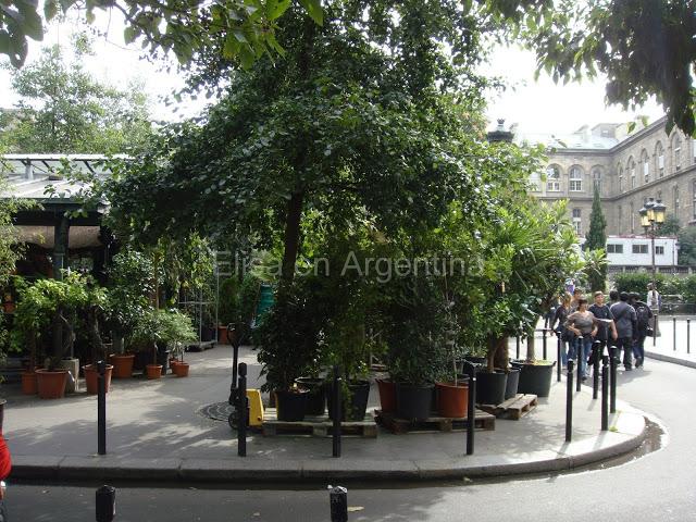 Shopping à Paris : la tradition des marchés de Paris 31