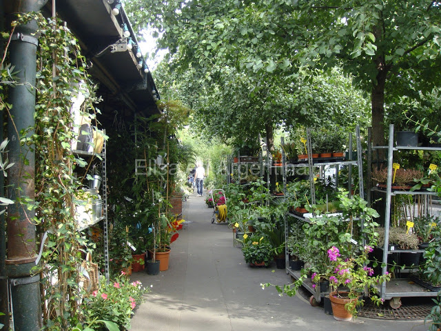 Shopping à Paris : la tradition des marchés de Paris 32