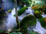 Plitvice Parc national Croatie : lacs de Plitvicka Jezera, une nature magnifique 2