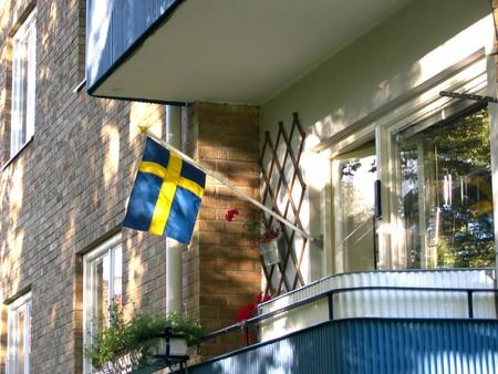 drapeau suede