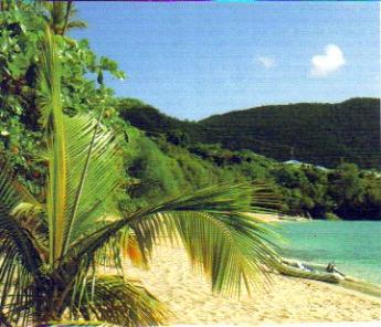 Parfum des îles