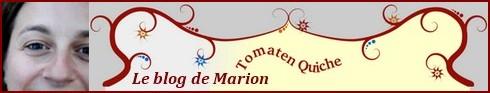 """""""Oeuvre originale créée par Marion Deveaud et publiée sur le site Tomaten Quiche""""."""