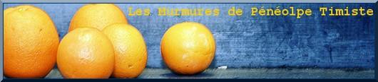 Cliquez sur la bannière pour découvrir les Murmures de Pénélope Timiste