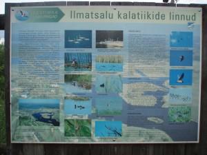 Au coeur du parc naturel de Tüki