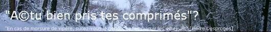 -> Découvrir le blog cacophonique & bourguignon