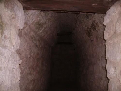 Chemins d'El Mirador ; expédition au cœur du monde maya (Voyage Guatemala) 4