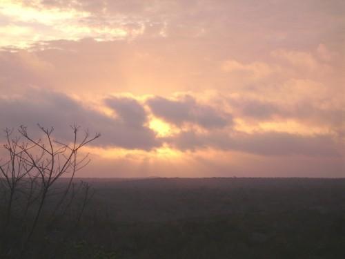 Chemins d'El Mirador ; expédition au cœur du monde maya (Voyage Guatemala) 6
