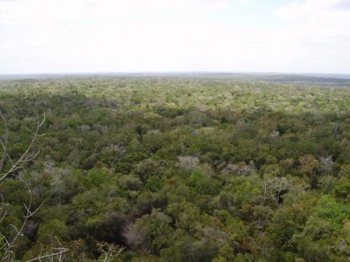 Chemins d'El Mirador ; expédition au cœur du monde maya (Voyage Guatemala) 7