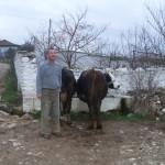 La Macédoine et ses mondes parallèles 17