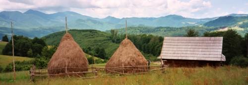 La forêt chez les Roumains ; acteur important dans la vie matérielle et spirituelle 2
