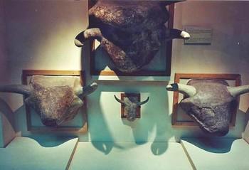Musée des Civilisations Anatoliennes d'Ankara : de l'Anatolie à la Turquie ... 1