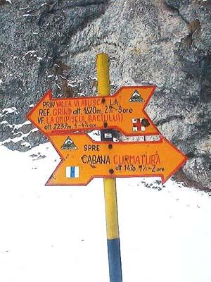 Piatra Craiului ; la nature en montagne autour de Brasov en Transylvanie (Randonnée Roumanie) 2