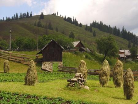 8 bonnes raisons d'aller en vacances en Roumanie... 1