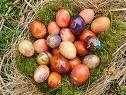 Coutumes ancestrales de Pâques en Allemagne: des lapins et des oeufs 1