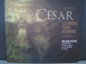 Exposition archéologique de Mark Dion à Arles : de curieuses fouilles et un artiste au talent fou  1