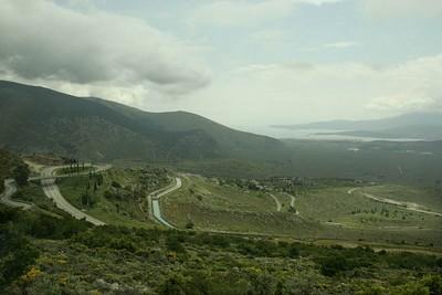 delphes grece oliviers