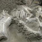 Les fouilles à Pompéi condamnent-elles le site à la destruction? 14