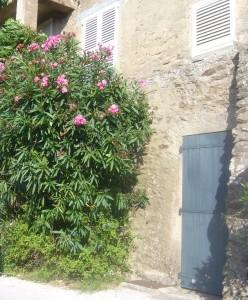 Gassin : l'un des plus beaux villages de France dans le Var 10