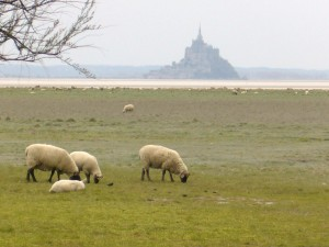 Mont Saint Michel ; grand site de France inscrit à l'UNESCO (Tourisme Normandie) 2