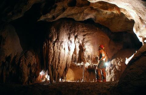 Grotte Coliboaia et art pariétal dans les monts Apuséni 4