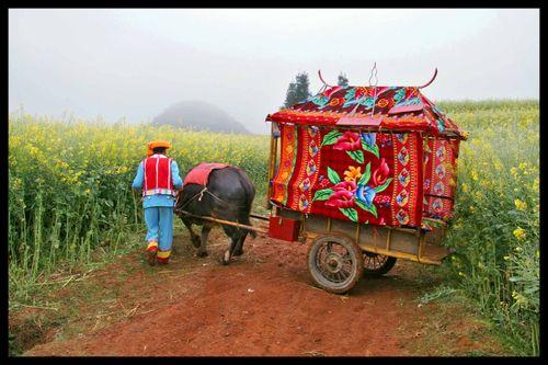Voyage Chine - Sur les routes de l'Himalaya : Partager c'est quoi ? 2