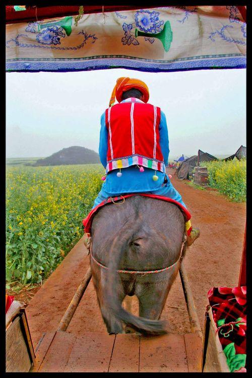Voyage Chine - Sur les routes de l'Himalaya : Partager c'est quoi ? 3