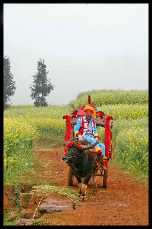 Voyage Chine - Sur les routes de l'Himalaya : Partager c'est quoi ? 1