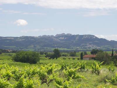 Les dentelles de Montmirail ; une randonnée unique en Provence dans le Vaucluse 1