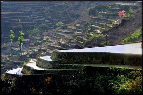 Du Yunnan à Yuanyang : Voyage Chine sur les « escaliers du ciel » 6
