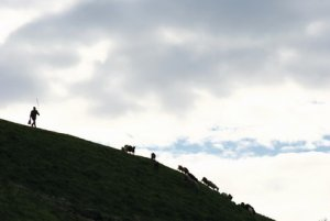Tourisme Moldavie - Tara ; village insolite de maisons grottes en pierres 1