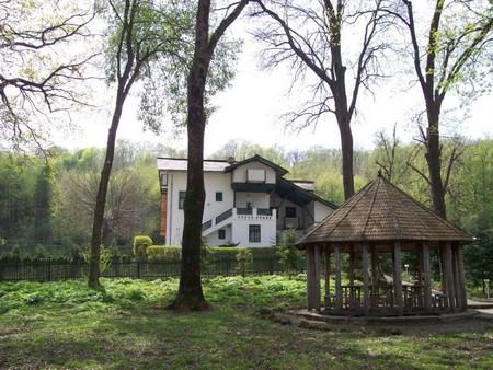 Comana, une réserve naturelle aux environs de Bucarest (Tourisme Roumanie) 5