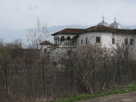 Comana, une réserve naturelle aux environs de Bucarest (Tourisme Roumanie) 1