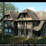 Cigoc Selo Roda, village des cigognes à Lonjsko Polje (Croatie Centrale) 3