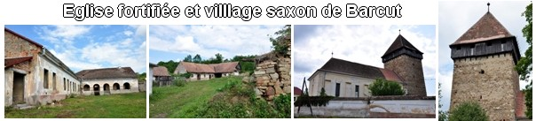 village saxon barcut