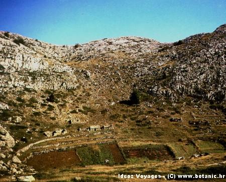 Parc naturel Biokovo : randonnée panoramique magnifique en Dalmatie centrale (Makarska) 28