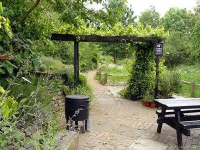 Camley street natural park London